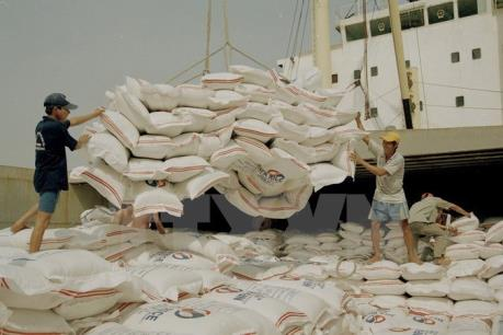 Philippines có thể nhập khẩu thêm 250.000 tấn gạo từ Thái Lan hoặc Việt Nam