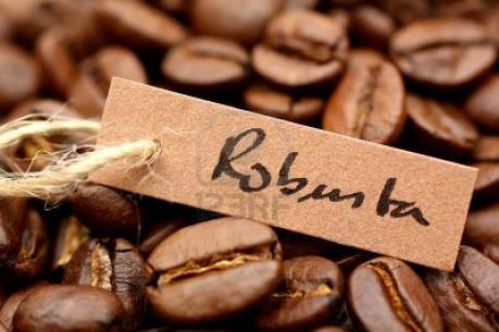 Colombia sẽ nhập khẩu cà phê robusta