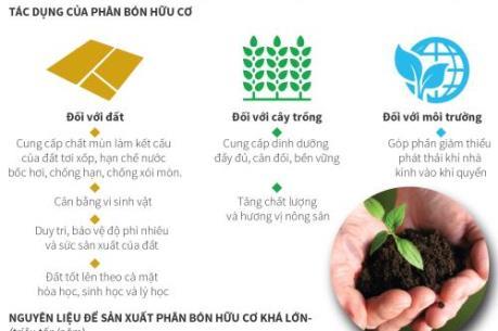Bạn hiểu gì về phân bón hữu cơ?