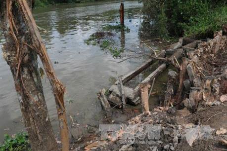 Đồng bằng sông Cửu Long ứng phó với sạt lở: Bài cuối: Giải pháp nào để ứng phó hiệu quả?
