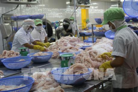 Doanh nghiệp thủy sản Việt Nam muốn mở rộng tại thị trường Trung Quốc