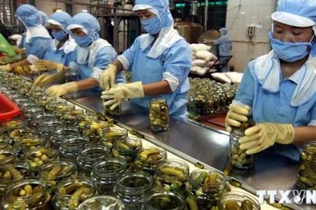 Giá trị xuất khẩu rau quả quý I giảm 9,3%