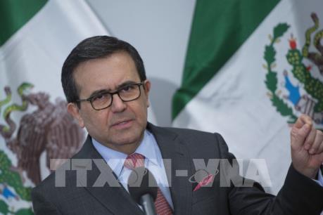 Bộ trưởng Mexico: Còn nhiều vấn đề cần giải quyết trong tái đàm phán NAFTA