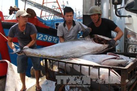Làm thế nào để ngư dân nắm rõ quy định của pháp luật thủy sản quốc tế?