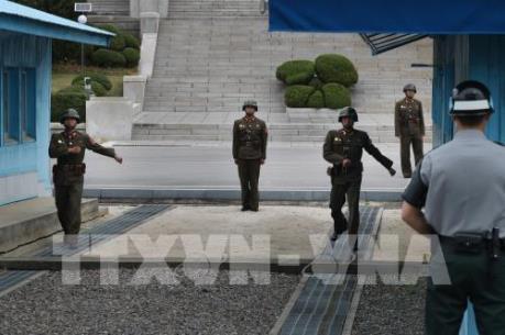 Mỹ, Hàn Quốc, Triều Tiên có thể tổ chức cuộc gặp thượng đỉnh ba bên vào mùa Hè