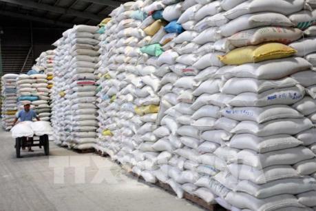 Xuất khẩu gạo đối mặt với áp lực cạnh tranh về giá
