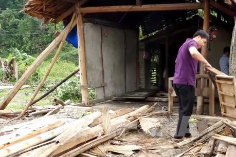 Mưa lớn kèm gió lốc gây thiệt hại lớn tại Tuyên Quang 