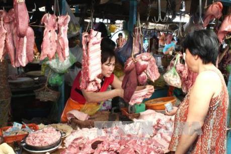 Cần Thơ: Giá lợn tăng cao do cung không đủ cầu