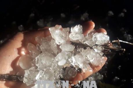 Mưa đá kéo dài gây thiệt hại lớn ở Lâm Đồng