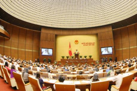 Kỳ họp thứ 5, Quốc hội khóa XIV: Quan điểm trái chiều về đấu giá biển số đẹp