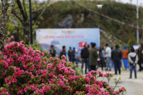 Hẹn hò tại thung lũng hoa dưới chân núi Fansipan