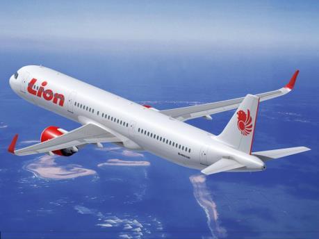 Indonesia: Báo động giả có bom trên máy bay làm 10 hành khách bị thương
