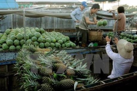 Phát huy giá trị thương hiệu trái cây đặc sản