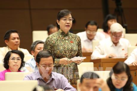 Đại biểu quốc hội tập trung chất vấn về vấn đề chống bạo hành và xâm hại trẻ em