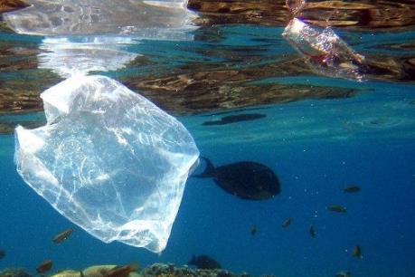 Mỗi năm, Châu Phi thải hơn 4 triệu tấn rác nhựa ra đại dương