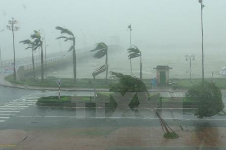Tin cuối cùng về cơn bão số 2
