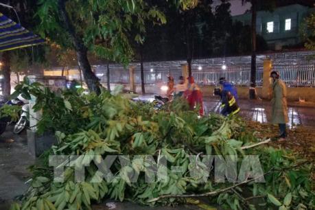 Dự báo thời tiết Hà Nội 10 ngày tới: Đề phòng mưa dông và gió giật mạnh