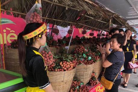 Khai mạc Tuần lễ vải thiều Lục Ngạn-Bắc Giang tại Hà Nội