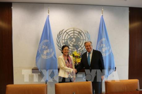 Tổng Thư ký Guterres đánh giá cao quan hệ hợp tác Việt Nam-Liên Hợp Quốc