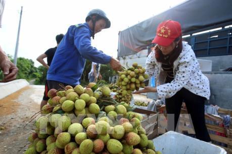 """Đẩy mạnh tiêu thụ nông sản: """"Lực đẩy"""" khơi thông thị trường"""