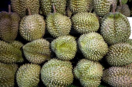 """Nguy cơ """"cuộc chiến trái cây"""" giữa Thái Lan - Indonesia"""