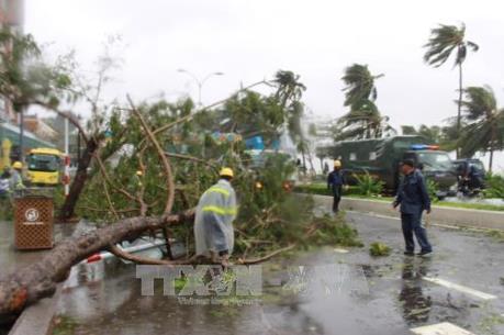 Sét đánh hỏng đường dây 22 KV khiến huyện đảo Cô Tô sẽ bị mất điện dài ngày