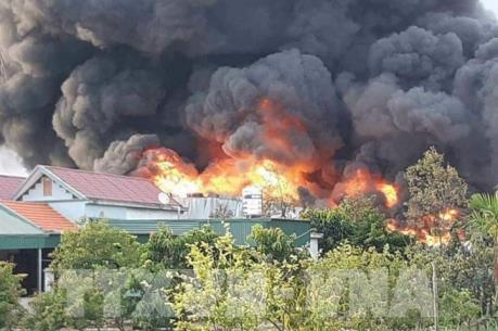Vụ cháy tại Công ty cổ phần Thông Quảng Ninh gây thiệt hại đến 12 tỷ đồng