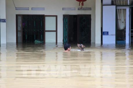 20 người chết và bị thương do mưa lũ tại Hà Giang, Lai Châu