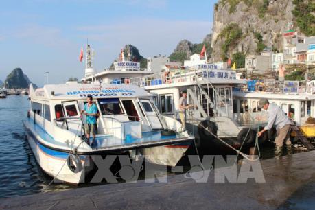 Huyện đảo Cô Tô đã có điện trở lại nhưng du khách vẫn nên hạn chế ra đảo