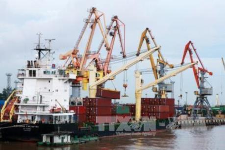 Cảng Hải Phòng có hơn 3.500 container quá thời hạn làm thủ tục hải quan
