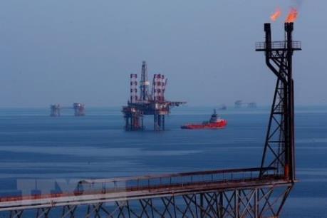 Tái cơ cấu ngành dầu khí cần song hành với hoàn thiện thể chế