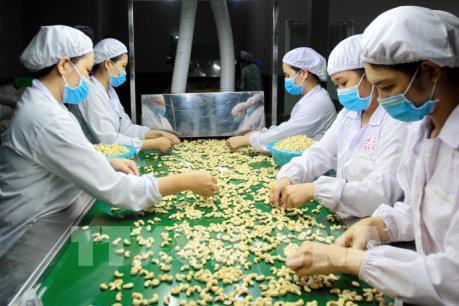 Nông thủy sản, thực phẩm và đồ uống Việt Nam chinh phục hội chợ lớn nhất Bắc Mỹ