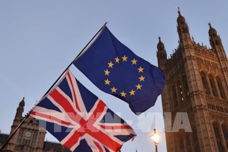 """Vấn đề Brexit: Lựa chọn giữa """"cứng"""" và """"mềm"""" (Phần 2)"""