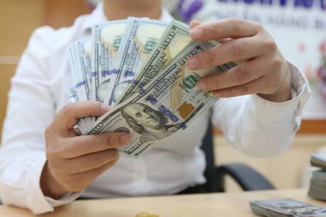Ngân hàng Nhà nước sẵn sàng bán ngoại tệ can thiệp thị trường