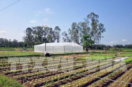 Sẽ xây dựng nông trường nông nghiệp công nghệ cao hơn 200 ha ở ngoại ô Đà Lạt
