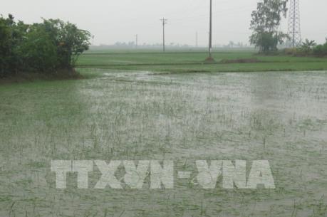 Bão số 3 suy yếu thành áp thấp nhiệt đới, Bắc Bộ, Bắc Trung Bộ mưa to