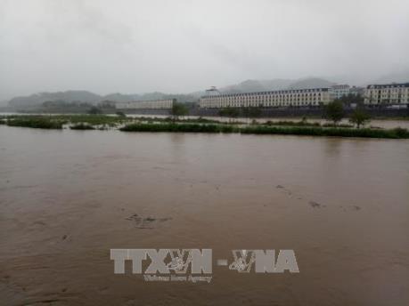 Lào Cai: Mực nước trên nhiều sông suối dâng cao do mưa lớn