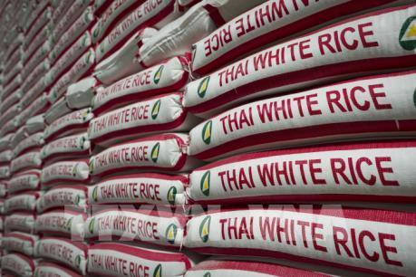 Thái Lan chi gần 3 tỷ USD để hỗ trợ ngành lúa gạo