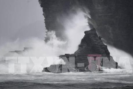 Bão Jongdari đổ bộ Nhật Bản