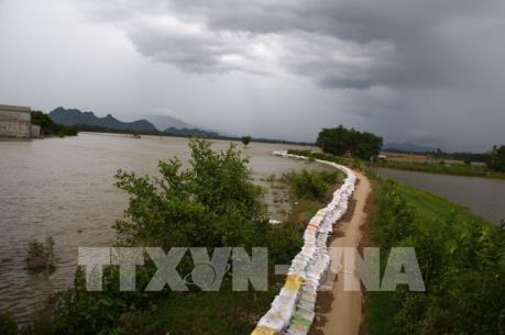 Nước trên sông Bùi đã rút nhưng vẫn trên báo động 3