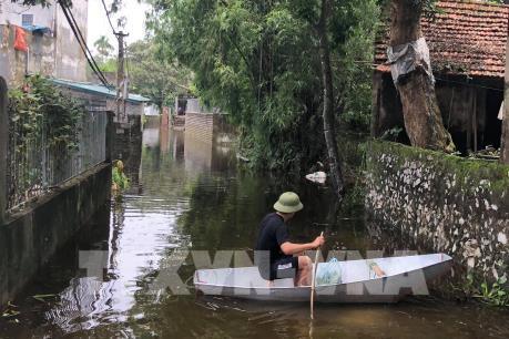 Hà Nam: Khắc phục hậu quả mưa lũ, kịp thời xử lý các sự cố đê điều