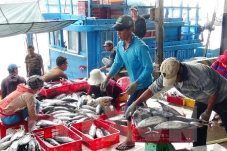 Hoàn thiện chính sách đầu tư dịch vụ hậu cần nghề cá tại 4 tỉnh miền Trung
