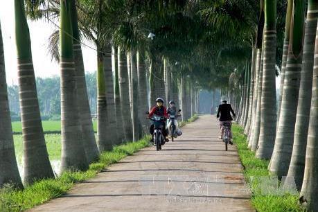 Xây dựng nông thôn mới gắn với giảm nghèo ở Ninh Bình