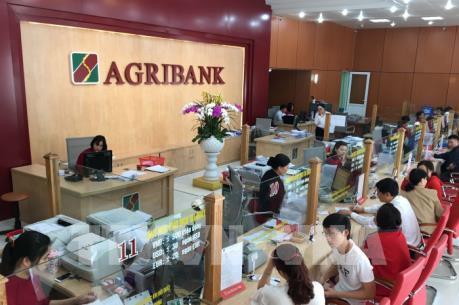 Agribank cho vay mới gần 21.000 tỷ đồng với khách hàng bị ảnh hưởng bởi dịch COVID-19