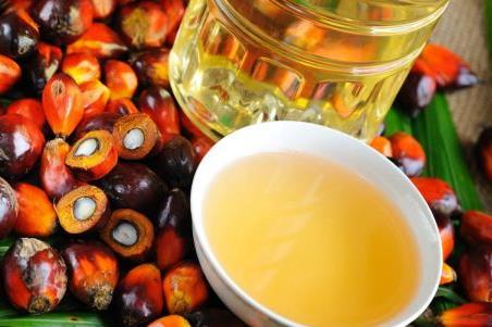 Tận dụng SAFTA để tránh thuế nhập khẩu dầu ăn của Ấn Độ