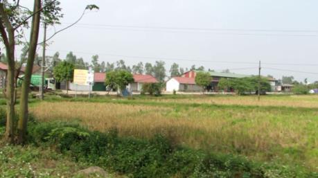 Phó Thủ tướng Trương Hoà Bình chỉ đạo giải quyết lại khiếu nại về đất đai của công dân