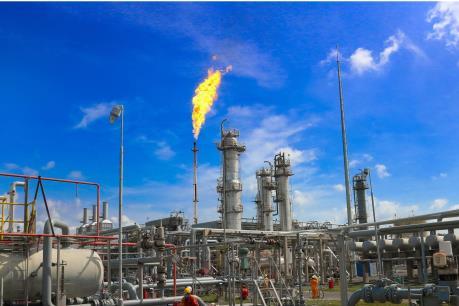 GAS tạm ứng cổ tức 20%