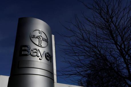 Tập đoàn Bayer lên tiếng sau phán quyết của tòa án Mỹ
