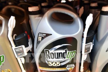 Vụ Monsanto nhóm lên hy vọng về vụ kiện chất độc da cam của Việt Nam