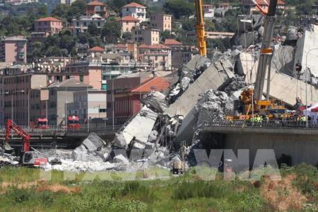 Lập quỹ 500 triệu euro hỗ trợ TP Genoa, xây lại cầu sập